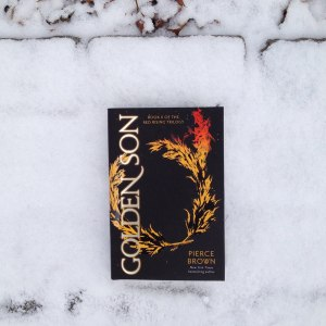 Golden Son in the Snow_n