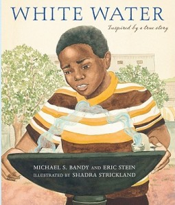 White-Water(Book)